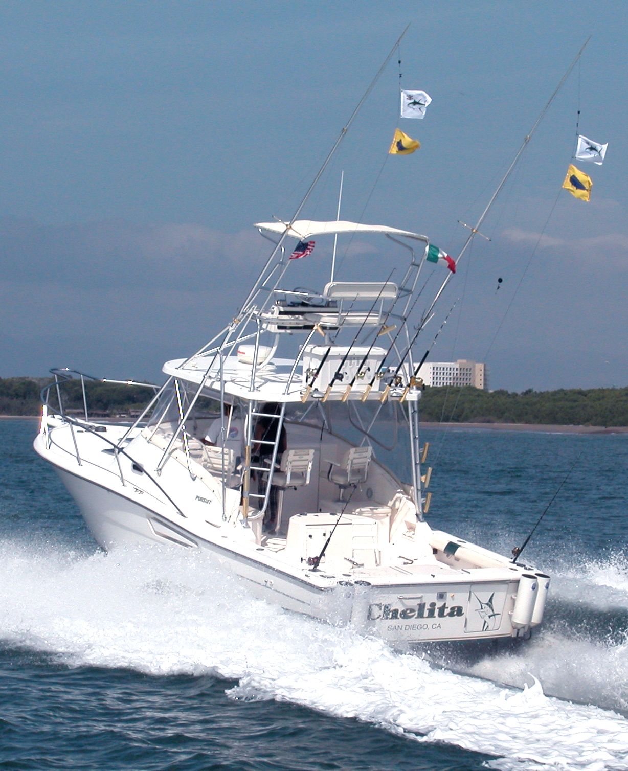 Puerto vallarta fishing charters for Puerto vallarta fishing